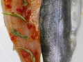 Fresh Trout fillets with marinades