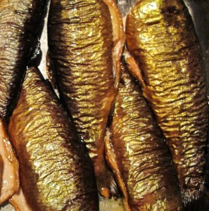 smoked trout_edited
